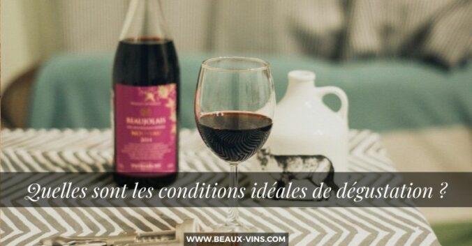 Quelles sont les conditions ideales de degustation vin