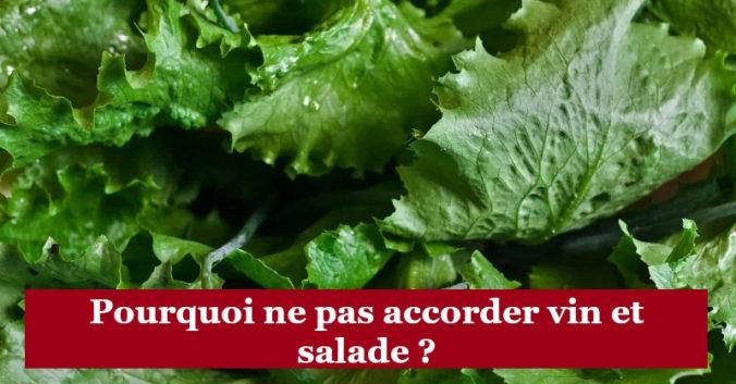 blog vin beaux-vins dégustation oenologie accord mets vins salade verte
