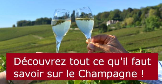Blog vin beaux-vins oenologie dégustation Champagne vignoble viticole vins