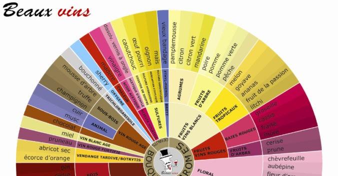 blog vin Beaux-Vins oenologie dégustation roue arômes crop