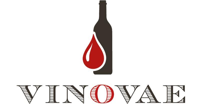 blog vin beaux-vins oenologie dégustation vinovae innovation