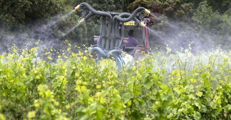 Blog vin Beaux-Vins ordre dégustation vins oenologie vignoble californie glyphosate pesticide