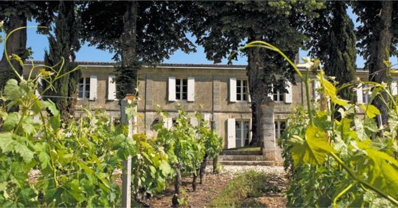 blog vin Beaux-Vins oenologie dégustation vin Jack Ma vignoble Bordeaux Château de Guerry