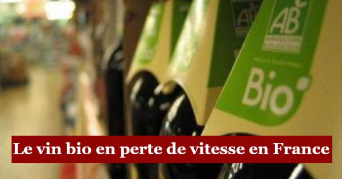 blog vin beaux-vins oenologie dégustation vin biologique france menu