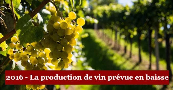 blog vin beaux-vins production vin 2016 baisse menu