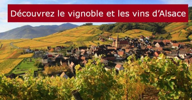 blog vin Beaux-VIns oenologie dégustation vignoble vins Alsace