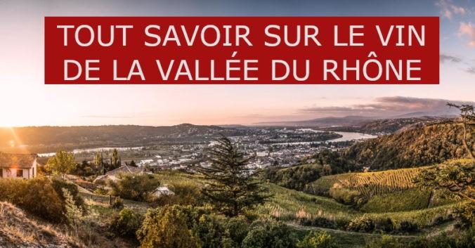 Tout savoir sur le vin de la Vallée du Rhône