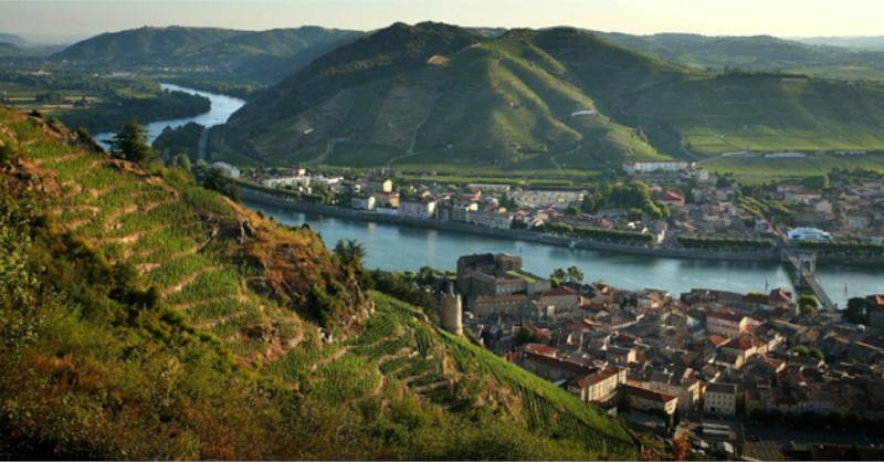 blog vin Beaux-Vins vignoble vins Vallée du Rhône oenologie dégustation