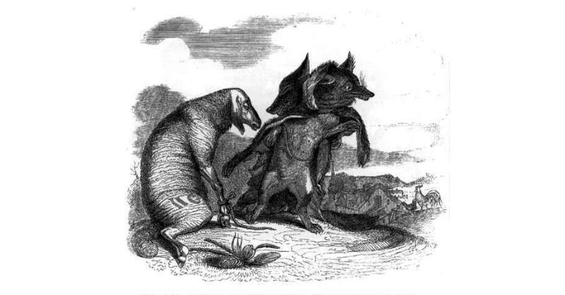 Reignac le petit Bordeaux qui s'est rêvé Grand Cru blog Beaux-Vins Loup Les animaux de la peste