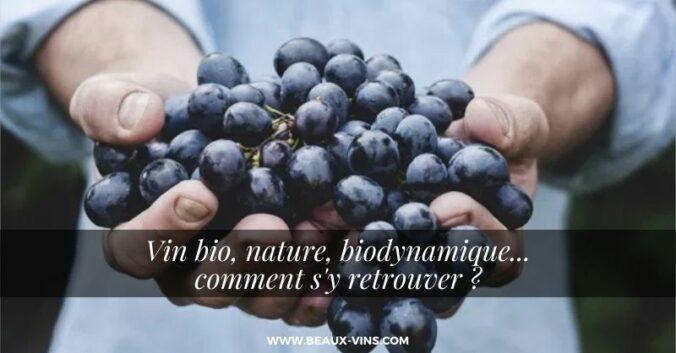 Vins bio, nature, biodynamique… Comment s'y retrouver