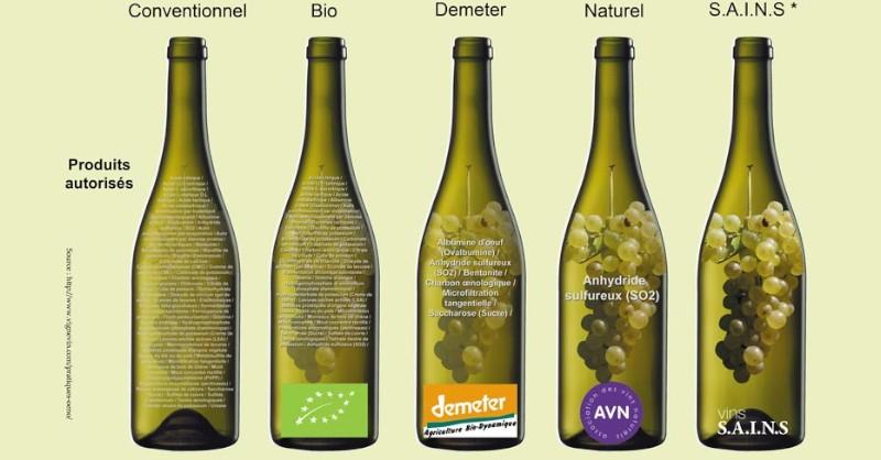 blog vin nature Beaux-Vins oenologie dégustation bio biodynamie