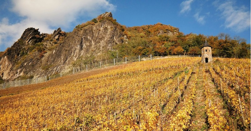 blog Beaux-Vins vin minéralité oenologie dégustation