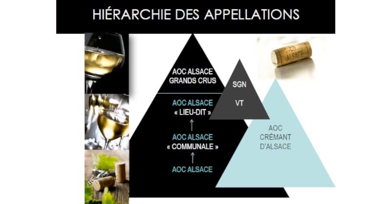 blog vin Beaux-VIns oenologie dégustation hiérarchie appellations vins Alsace