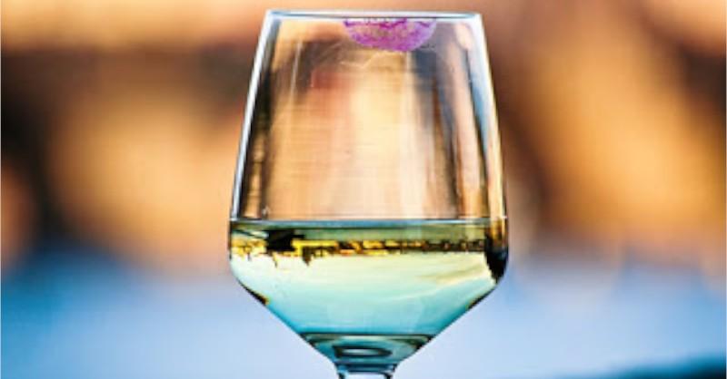blog vin Beaux-Vins égalité homme femme dégustation oenologie rouge à lèvres