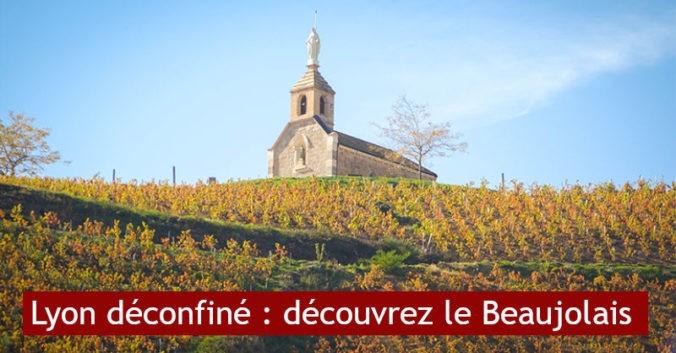 Déconfinement découvrez vignoble beaujolais visites privilège lyon
