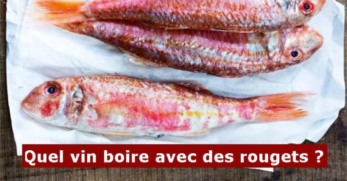 blog beaux-vins accord mets vin rougets poisson