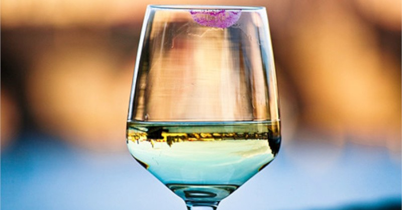 blog vin beaux-vins oenologie deguster vins rouge a levres trace verre