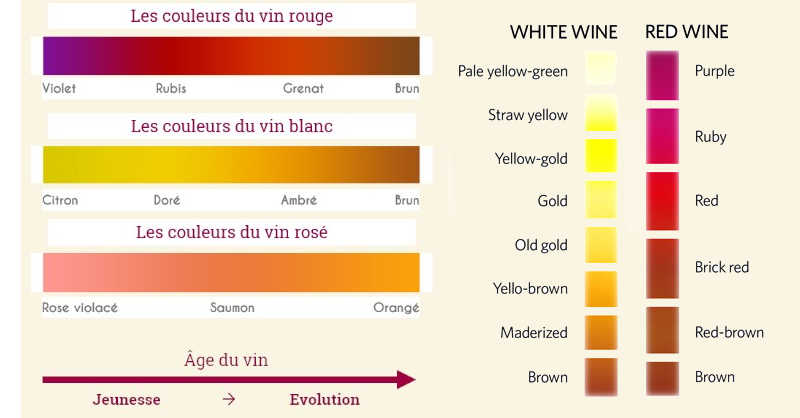 blog Beaux-Vins couleurs vin rouge blanc wine colours