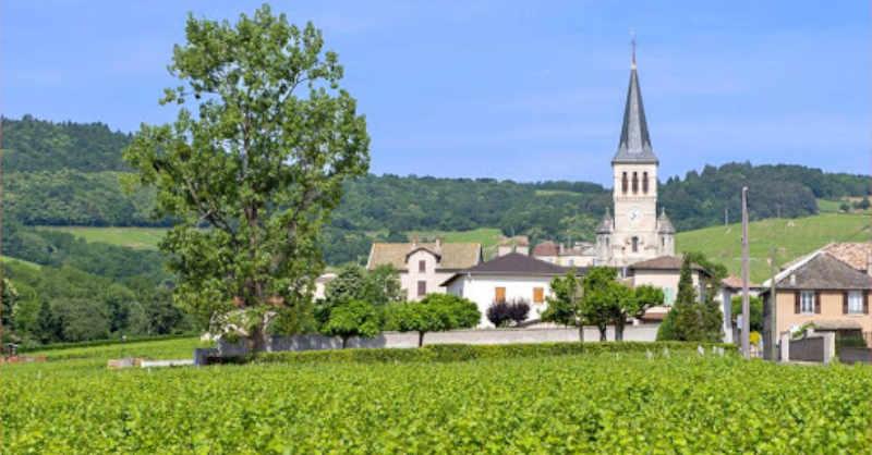 blog vin beaux-vins quizz beaujolais chenas