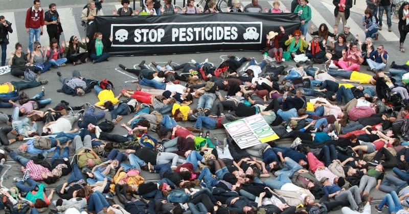 blog vin beauxvins cite du vin bordeaux manifestation stop pesticide