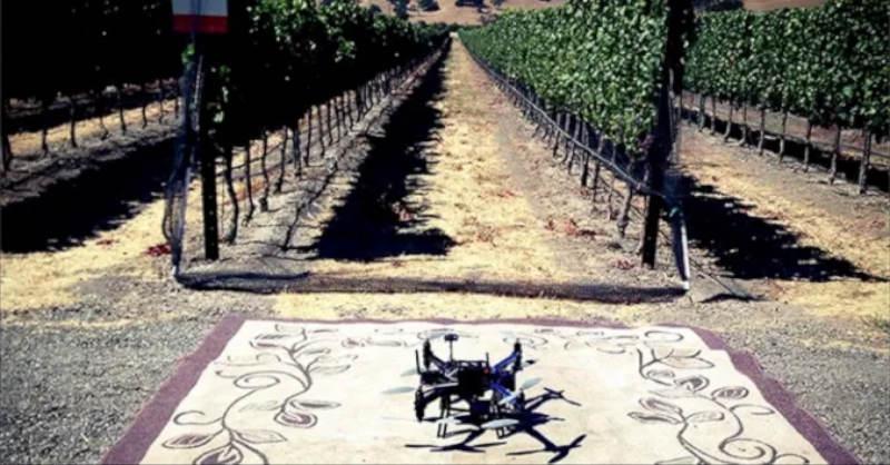 blog vin beauxvins drone viticulture